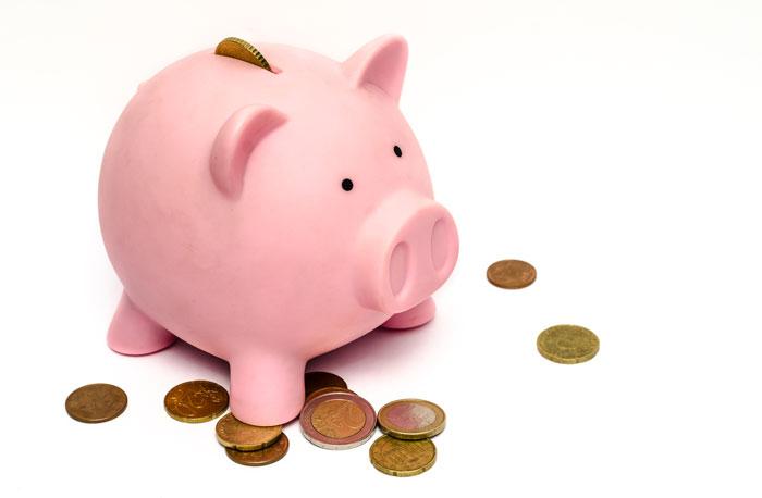 Pigg Bank With Coins