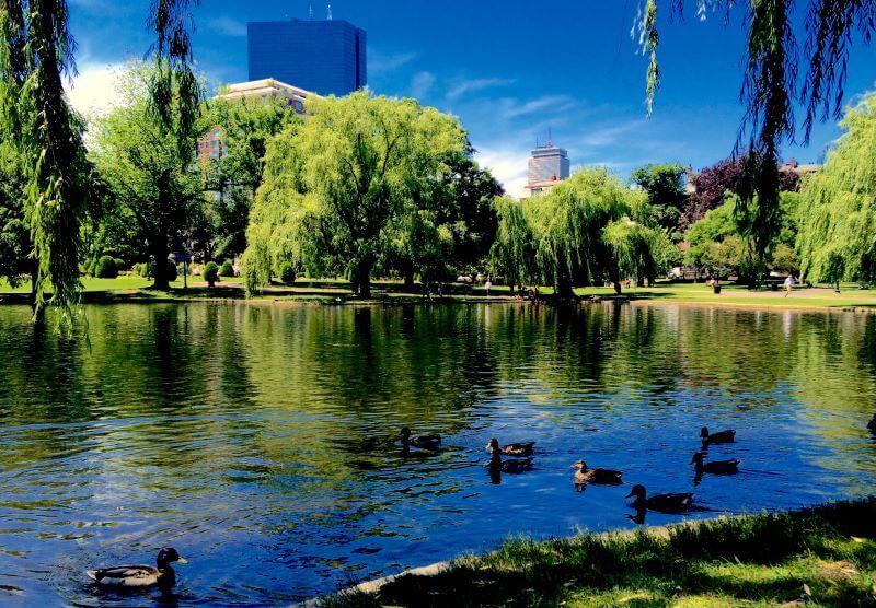 Boston Commons Boston Apartments