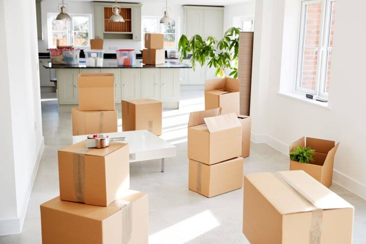 Move in- Move Out boxes