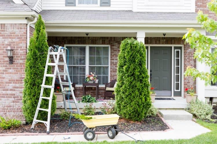 Maintenance of Property