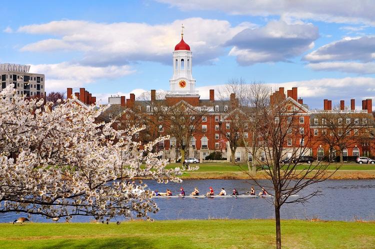Cambridge MA Springtime