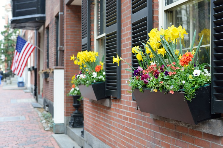 Diversifing Investments with Row houses
