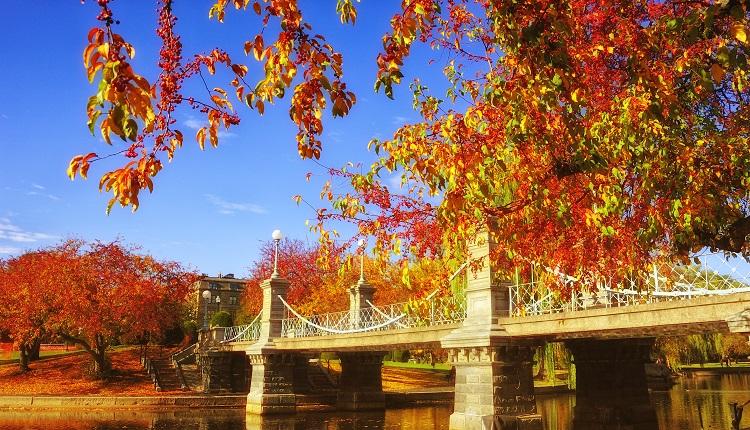 Boston Fall